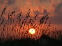 sunsets2