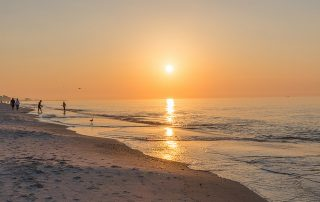 Alabama Coastal Conservation