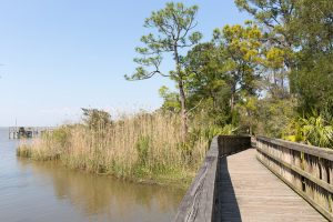 Alabama Coastal Conservation Programs