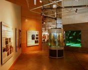 Alabama Gulf Coast museums