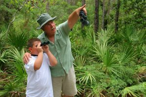 birdwatchers at Dauphin Island Audobon Bird Sanctuary
