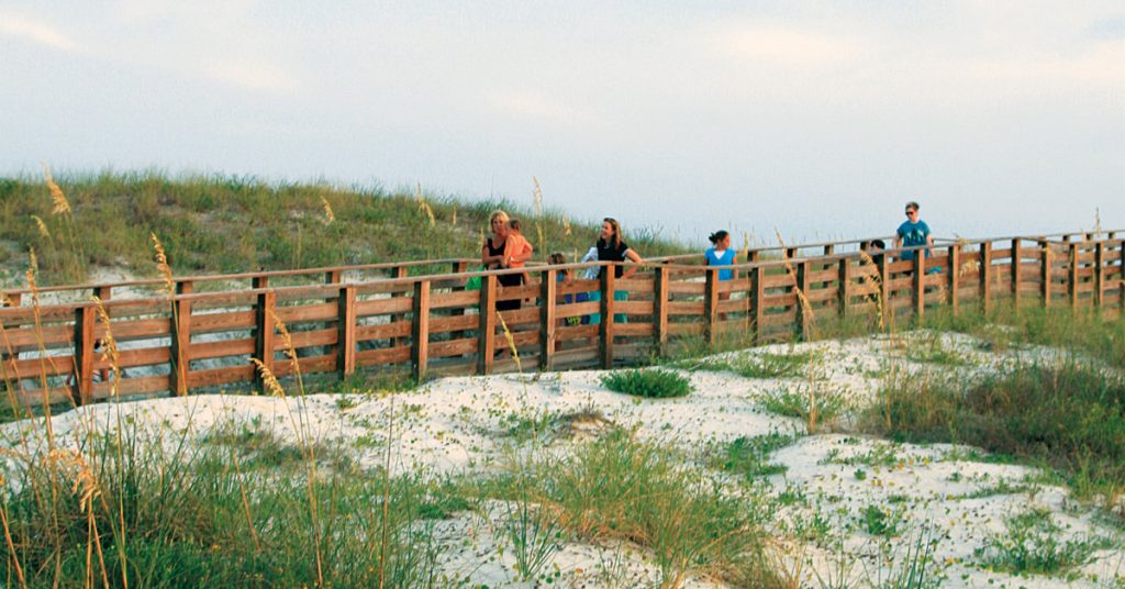 people walking on a beach trail